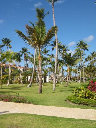Garden View Picture Of Now Larimar Punta Cana Bavaro