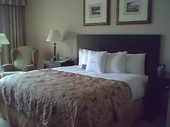 DoubleTree by Hilton Hotel Chicago Wood Dale - Elk Grove: bed