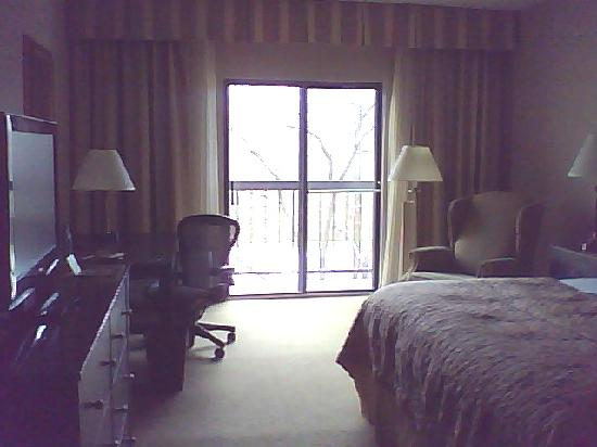 DoubleTree by Hilton Hotel Chicago Wood Dale - Elk Grove: small balcony