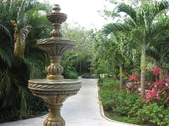 Occidental Cozumel: One shot of the grounds
