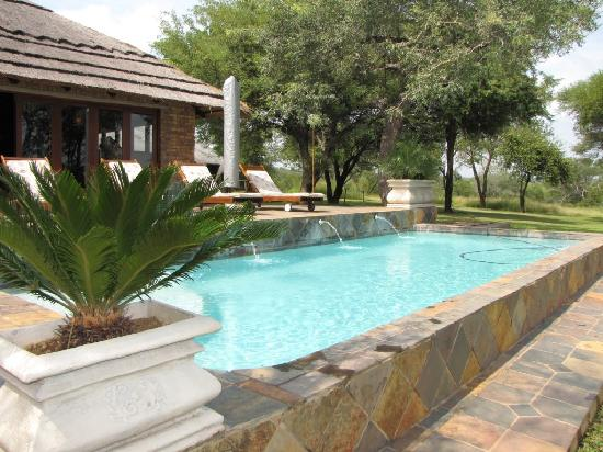 Elandela Private Game Reserve: pool