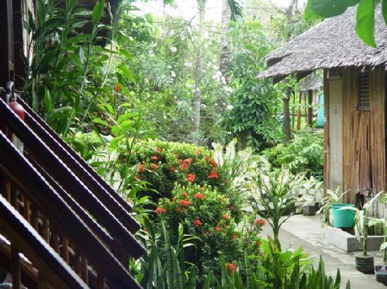 Frendz Resort Boracay : The rooms/cabins.