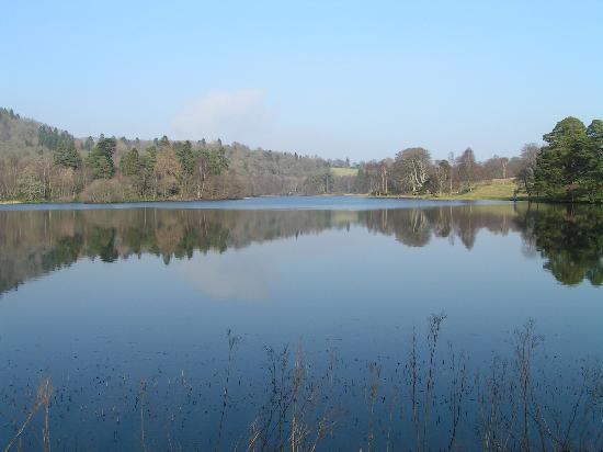 Loch Monzievaird Self Catering Lodges: a view across the loch (1.5ml.walk, perfect)