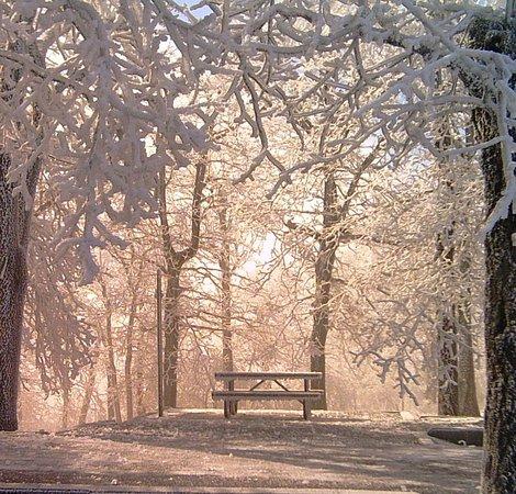 Mena, AR: Frozen Campsite