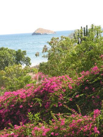 Las Sirenas de Santa Clara - Beach Front Cabins: Another beautiful view.
