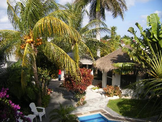 Baldwin's Guest House Cozumel: View from Casita Roof