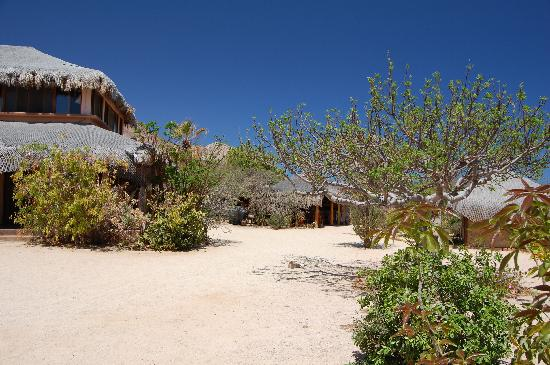Baja Bungalows: Part of the property, the main house and one of the  kitchen.