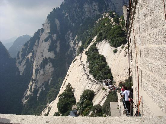 Stairs Anyone Picture Of Mount Huashan Huayin