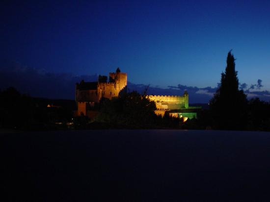 ‪‪Beynac-et-Cazenac‬, فرنسا: Chateau Beynac by Night‬