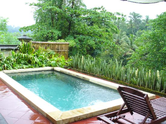 Villa Semana: Plunge Pool
