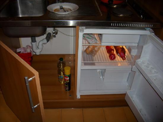 Albayzin DeLuxe: frigorífico con comida y hongos
