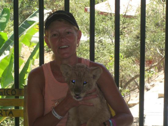 Zoologico de Vallarta: Bezerk holding lion cub