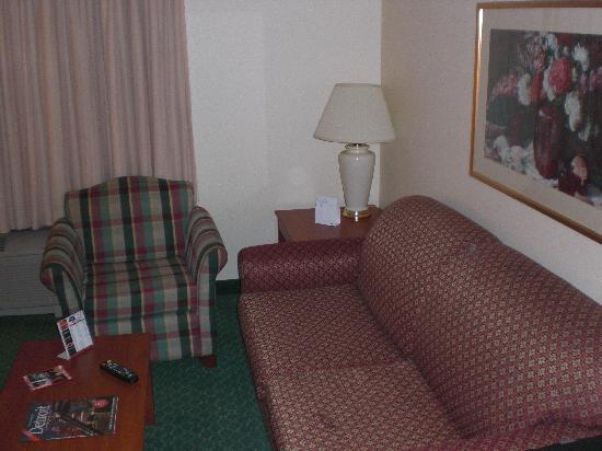Towneplace Suites Detroit Livonia: Good Furniture