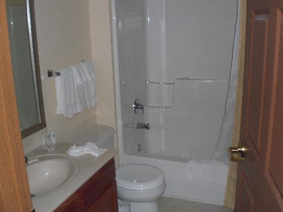 Towneplace Suites Detroit Livonia : Clean Bathroom