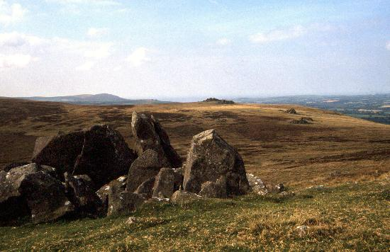 Pembrokeshire, UK: Preseli Hills: Near the summit of Carn Manyn