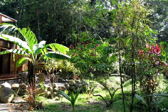 Congo Bongo Ecolodges Costa Rica: Big House plus Natur