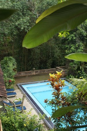 Photo of Kajeng Bungalows Ubud