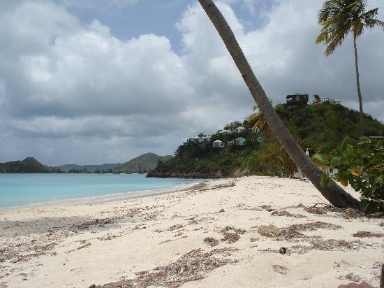 Antigua: The Nest Beach