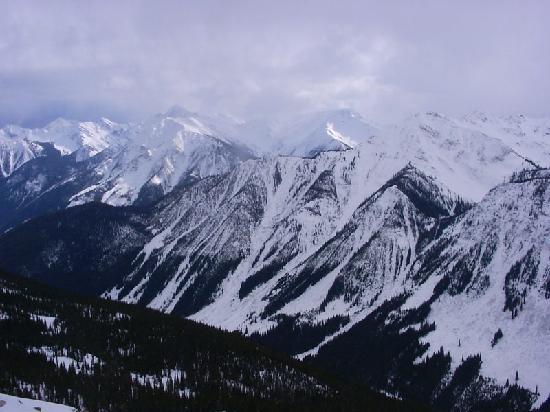 Pinewood Inn: The canadian rockies in Golden, B.C.