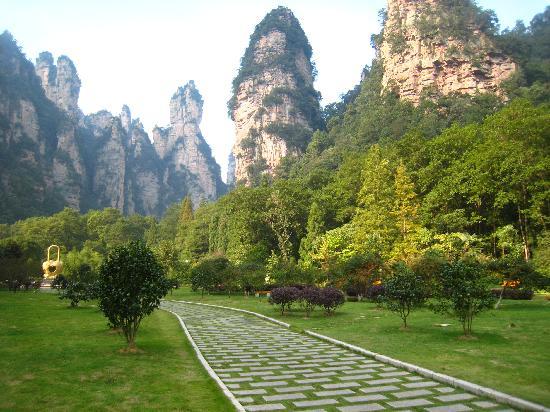 Wulingyuan Scenic and Historic Interest Area of Zhangjiajie: Fantastic scenery from down below in Zhangjiajie Forest Park