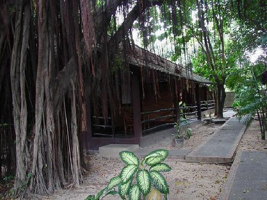 The Cottage: bungalow