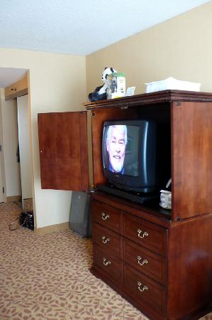 Franklin Marriott Cool Springs: Room