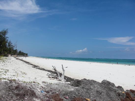 Diani Blue: la spiaggia bianca