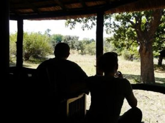 Tena Tena Camp: Elephant Watching From Your Tent