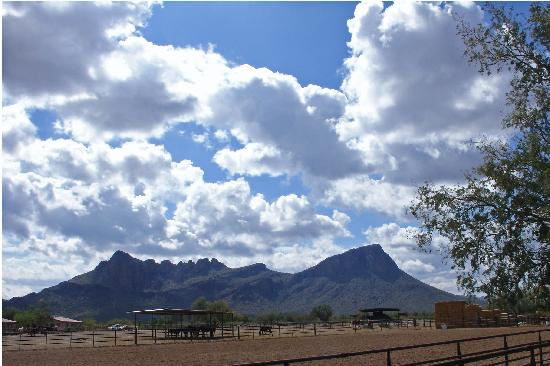 White Stallion Ranch: White Stallion Views