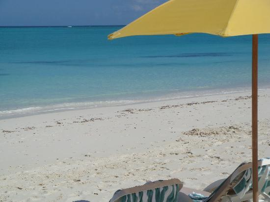 Alexandra Resort: View from our beach chairs.