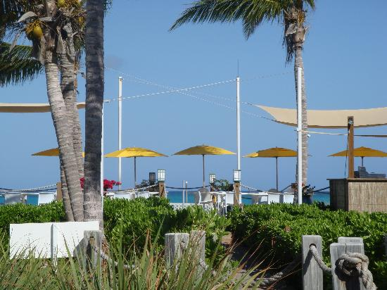Alexandra Resort: The Orchid grill on the beach