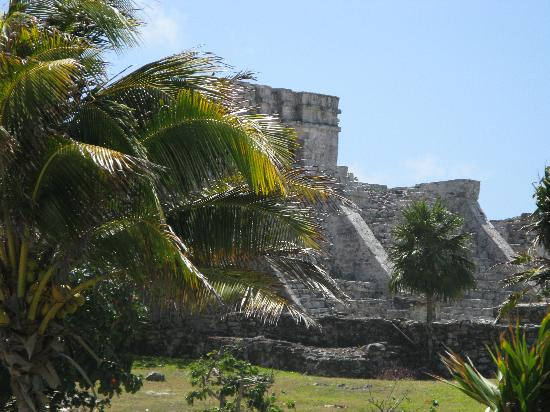 The Reef Playacar: Ruinas de Tulum