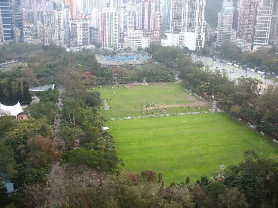 Tripadvisor Hong Kong Hotels