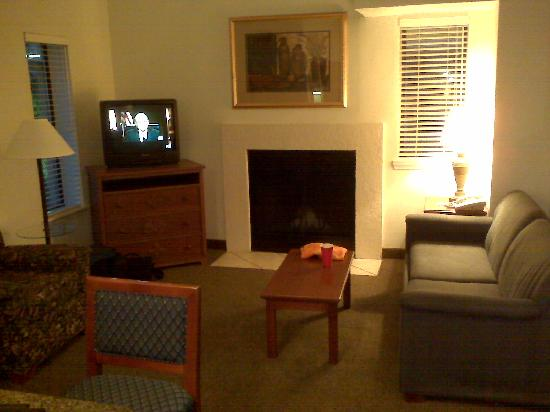 living area picture of chase suite hotel tampa tampa. Black Bedroom Furniture Sets. Home Design Ideas