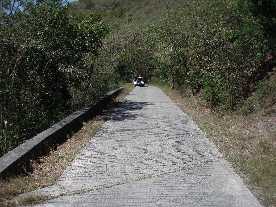Guana Island: Walk or Catch a Ride
