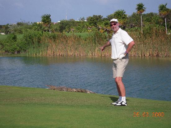 Playa Mujeres Golf Club: calme compagnie