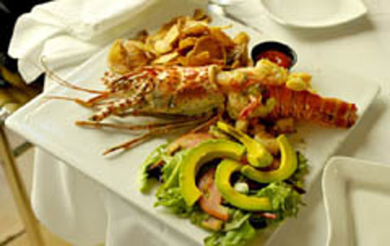 Fifi's Seafood Restaurant: lobster