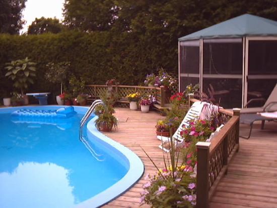 A la Claire Fontaine: Swiming pool