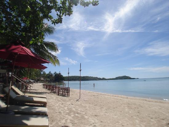 The Briza Beach Resort Samui: Strand vor dem Hotel