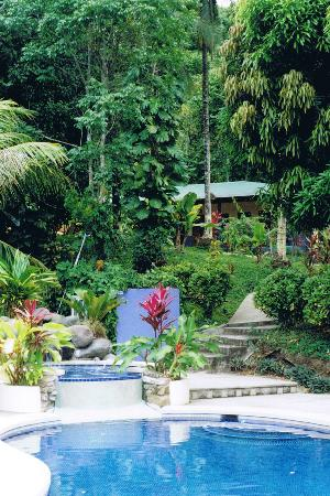 Star Mountain Jungle Lodge: Pool and rooms in background