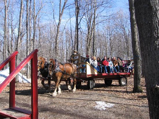 Sand Road Sugar Camp: Wagon Ride