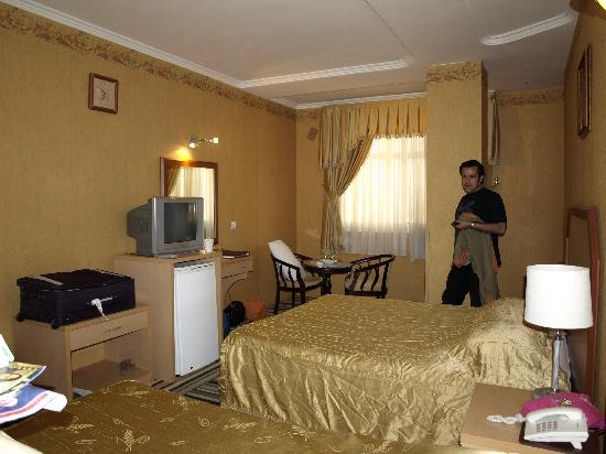 Aseman Hotel: room