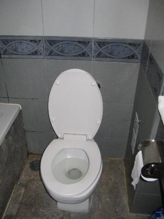 โรงแรมบางกอก ซิตี้ อินน์: Bathroom