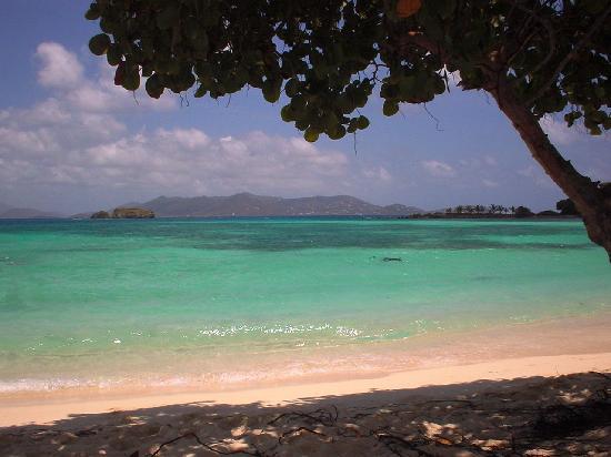 Crystal Cove Beach Resort On Sapphire Bay St Thomas