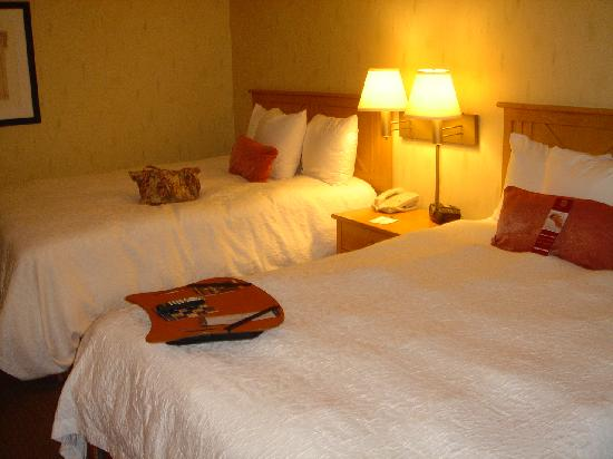 Country Inn & Suites By Carlson, Flagstaff : Queen Beds