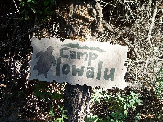 Camp Olowalu: Enter here!