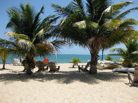 Westwind Hotel on the Beach: Paradise found!