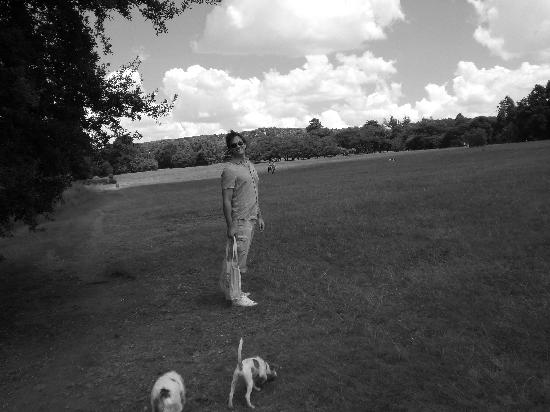 Johannesburg Botanical Gardens and Emmarentia Dam : Dog walking.