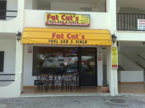 The Bar Itself Picture Of Fat Cat S Albufeira