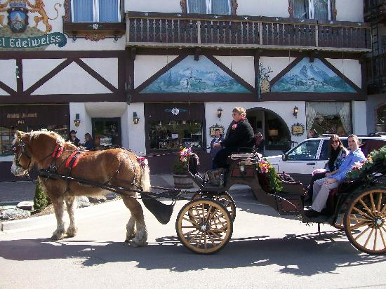 Le Tours - Leavenworth's Enchanted Tours: Horse & Carriage Ride